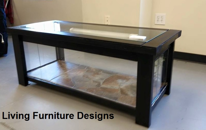 Coffee Table Reptile Terrarium Rascalartsnyc